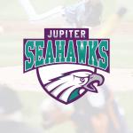 loghi personalizzati - logo per squdra di baseball